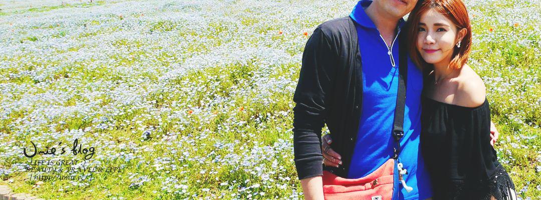 日本自助旅行-東京週邊觀光 茨城縣(Ibaraki) 初夏賞花,超夢幻粉蝶花、紫藤花 :)