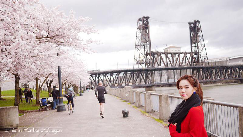 出國旅行前注意事項|關於旅行平安險,關於出國夢想基金 :) 中國人壽保險